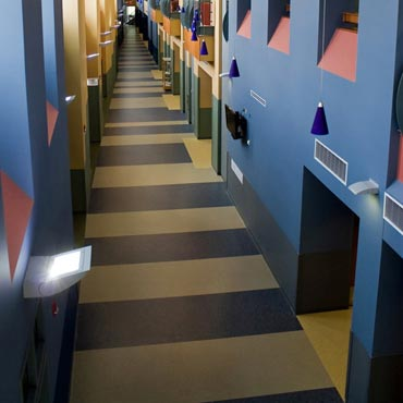 Johnsonite® Commerical Flooring | Springfield, MO